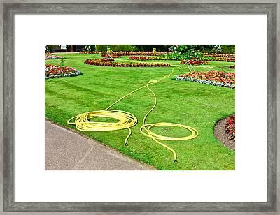 Garden Hosepipes Framed Print by Tom Gowanlock