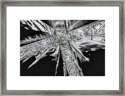 Garden Of Exile Framed Print by Peter Benkmann