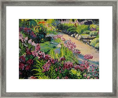 Garden Path Framed Print by William Bukowski