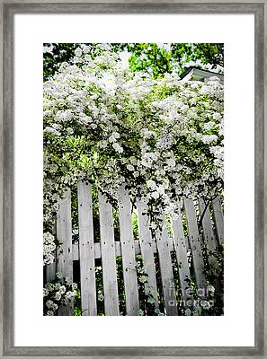Garden With White Fence Framed Print by Elena Elisseeva