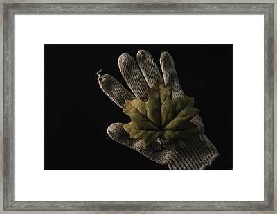 Garden Work Framed Print by John Hesley