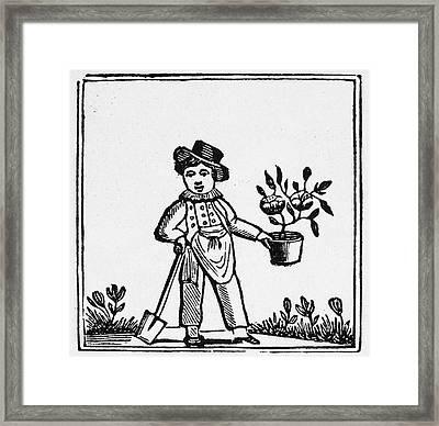 Gardener, 19th Century Framed Print by Granger