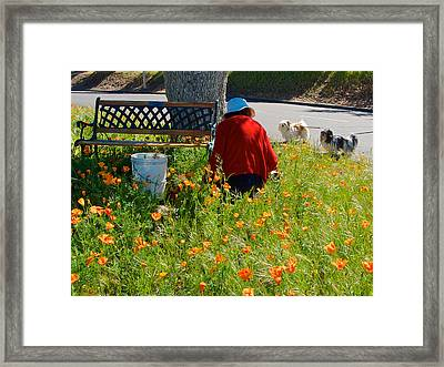 Gardening Distractions In Park Sierra-california Framed Print by Ruth Hager