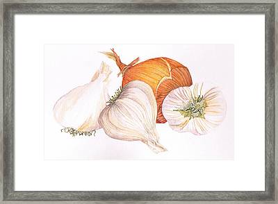 Garlic And Onion Framed Print by Jenny Haslimeier