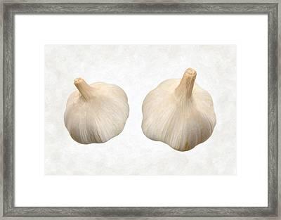 Garlic Framed Print by Danny Smythe