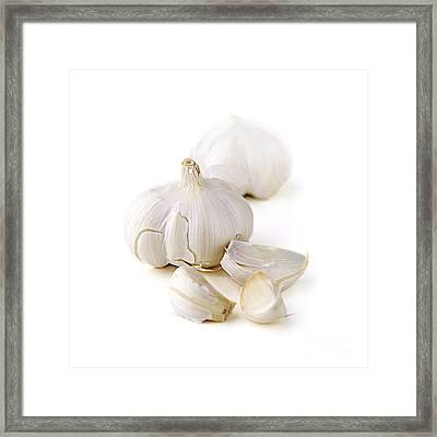 Garlic Framed Print by Elena Elisseeva