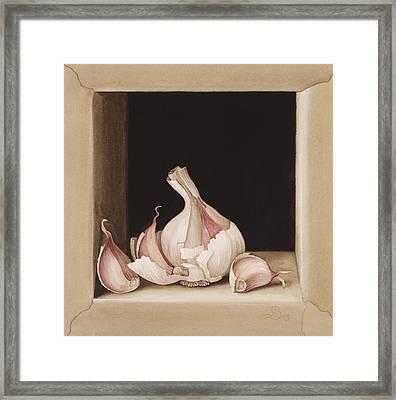 Garlic Framed Print by Jenny Barron