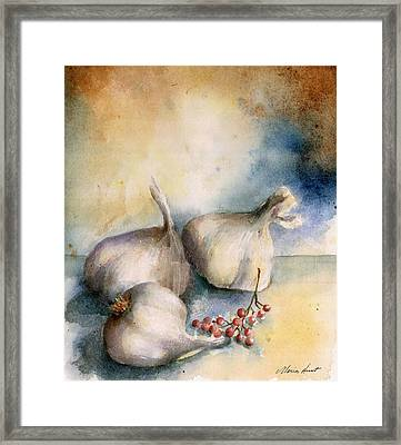 Garlic With Peppercorns 2 Framed Print by Maria Hunt