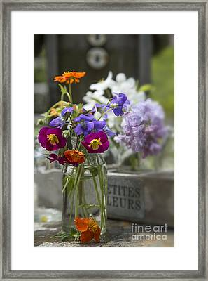Gathering Wildflowers Framed Print by Edward Fielding