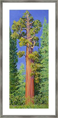 General Grant Tree Framed Print by Joy Collier