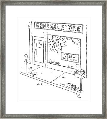 General Store Features Signs 'yes Framed Print by Liana Finck