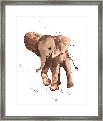 Gentle Graham Elephant Framed Print by Alison Fennell