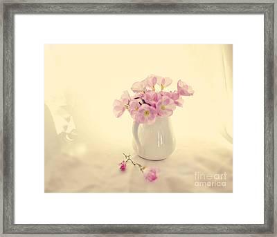 Gentle Light Framed Print by Linde Townsend