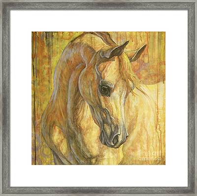 Gentle Spirit Framed Print by Silvana Gabudean