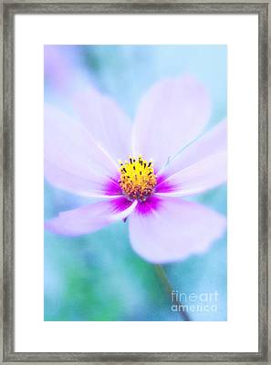 Gentle Framed Print by VIAINA Visual Artist