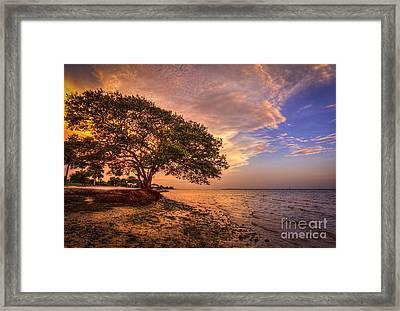 Gentle Whisper Framed Print by Marvin Spates