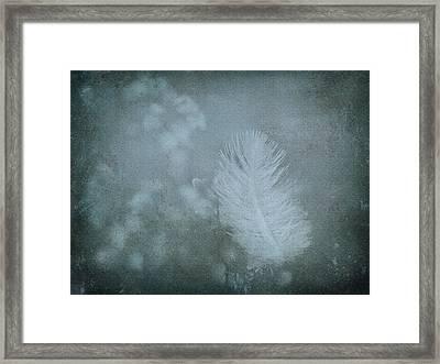 Gently Framed Print by Liz  Alderdice