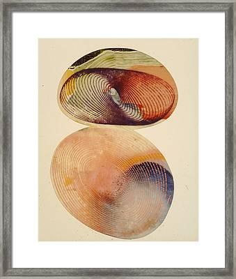 Geometric Framed Print by Jeremy Johnson