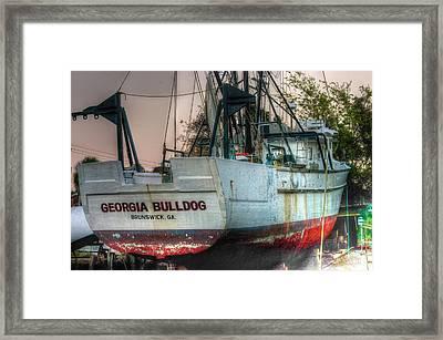 Georgia Bulldog Framed Print by Dennis Baswell