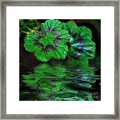 Geranium Leaves - Reflections On Pond Framed Print by Kaye Menner
