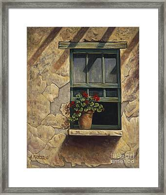 Geraniums And Shadows Framed Print by Ricardo Chavez-Mendez