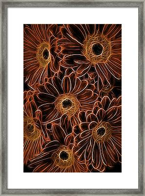 Gerbera Abstract Framed Print by Garry Gay