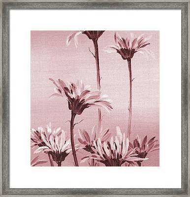Gerberas Framed Print by Natasha Denger