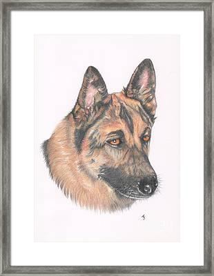 German Shepherd Dog Framed Print by Yvonne Johnstone