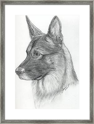 German Shepherd Framed Print by Lorah Buchanan