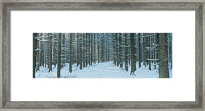 Germany Framed Print by Panoramic Images
