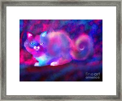 Ghost Cat 2 Framed Print by Nick Gustafson