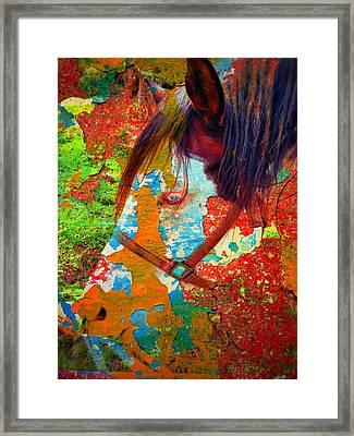 Ghost Horse Framed Print by Skip Hunt