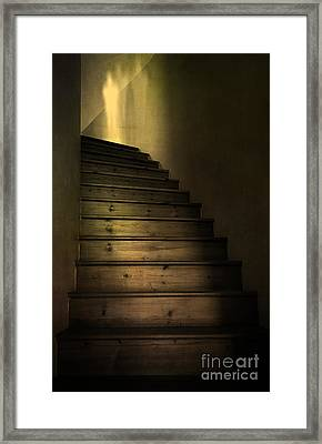 Ghost Framed Print by Svetlana Sewell
