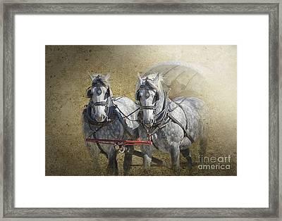 Giddyup Framed Print by Betty LaRue