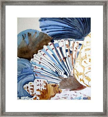 Gift Of The Sea Framed Print by Sandy McIntire