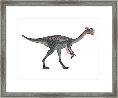 Gigantoraptor Dinosaur Framed Print by Friedrich Saurer