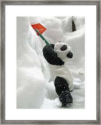 Ginny The Baby Panda In Winter #01 Framed Print by Ausra Huntington nee Paulauskaite