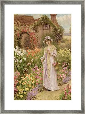 Girl By A Herbaceous Border Framed Print by William Affleck