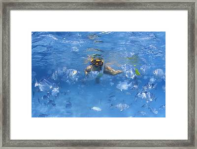 Girl Snorkeling In The Caribbean Framed Print by Carson Ganci