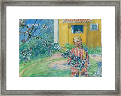 Girl With Apple Blossom Framed Print by Carl Larsson