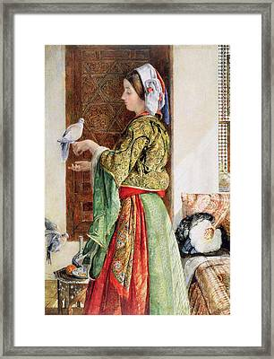 Girl With Two Caged Doves, Cairo, 1864 Framed Print by John Frederick Lewis