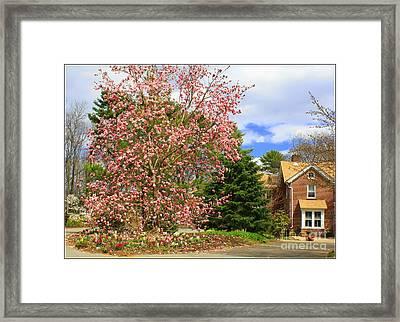 Glimpses Of Spring Framed Print by Dora Sofia Caputo Photographic Art and Design