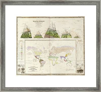 Global Botanical Geography Framed Print by Library Of Congress, Geography And Map Division