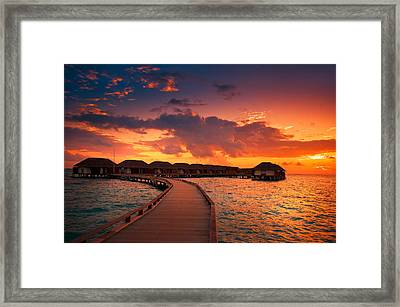 Glorious End Of The Tropical Day Framed Print by Jenny Rainbow