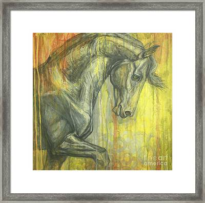 Glorious Framed Print by Silvana Gabudean