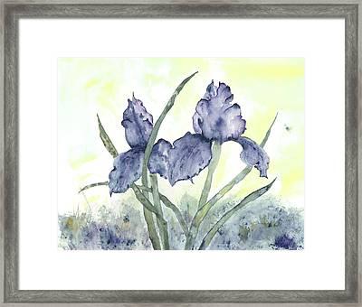 Gloriously Purple II Framed Print by Shirley Mercer