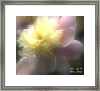 Glow Framed Print by Kathleen Struckle