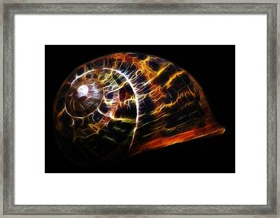 Glowing Shell Framed Print by Shane Bechler