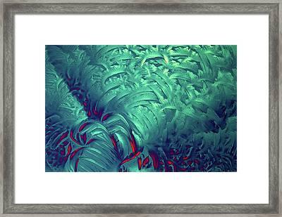 Glycine Crystals Framed Print by Marek Mis