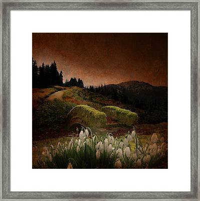 Gnome In A Mythical Landscape Framed Print by Jeff Burgess